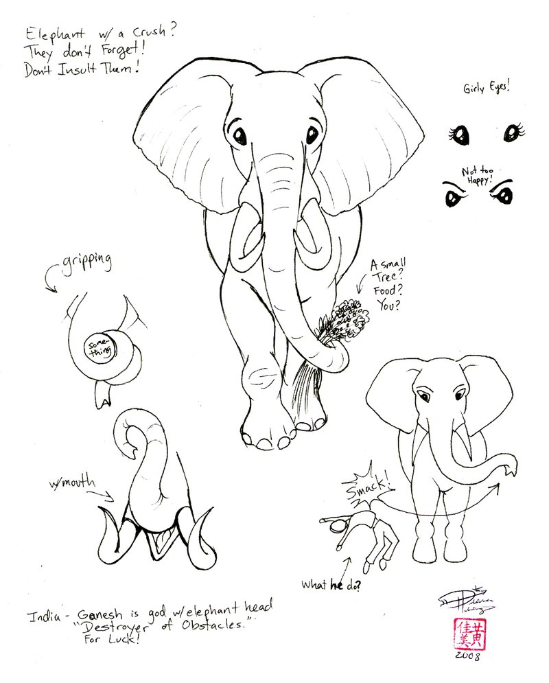 800x995 Draw An Elephant 2 Part2 By Diana Huang