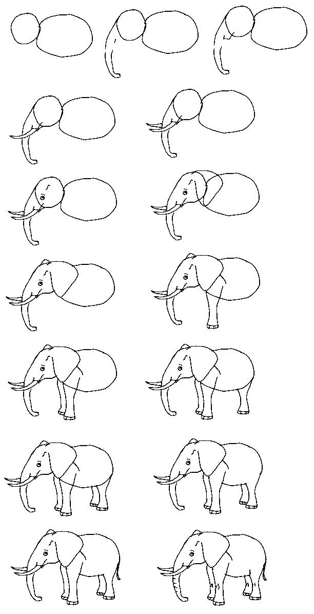 612x1196 Great Tutorial For Someone Who Can'T Draw Their Favorite Animal