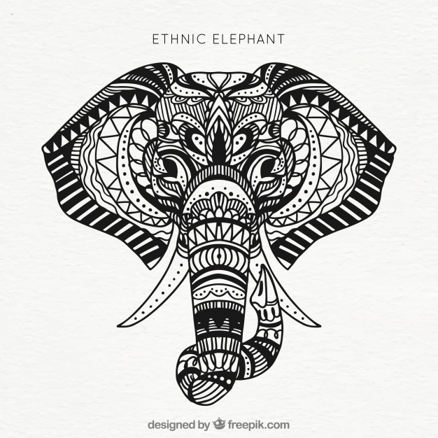 Elephant Front View Drawing at GetDrawings com | Free for personal
