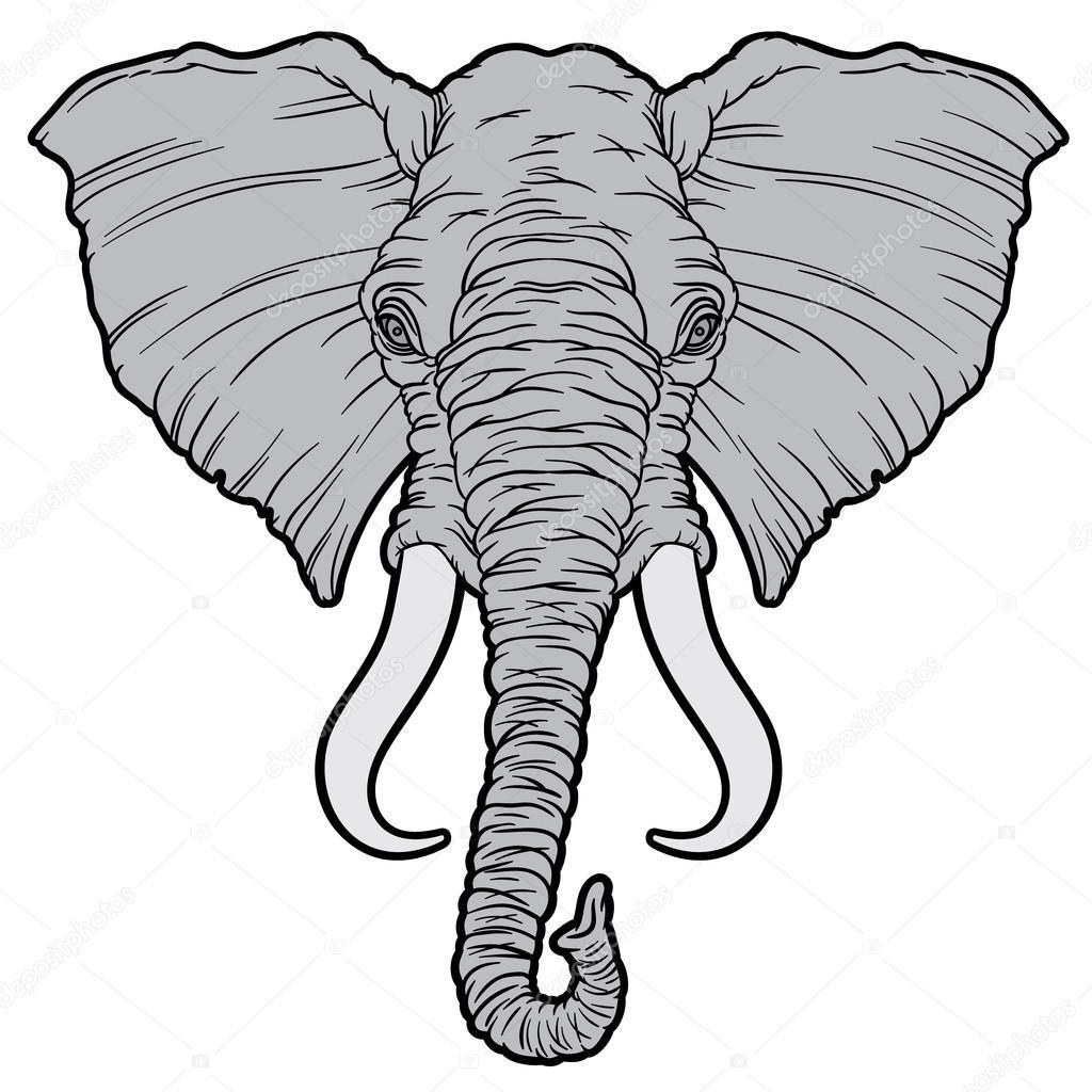 1024x1024 Cartoon African Elephant Head Stock Vector Annasuchkova