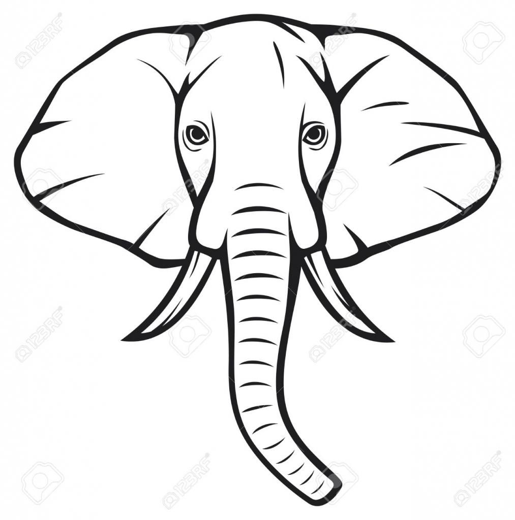 1013x1024 Drawing Of An Elephant Head