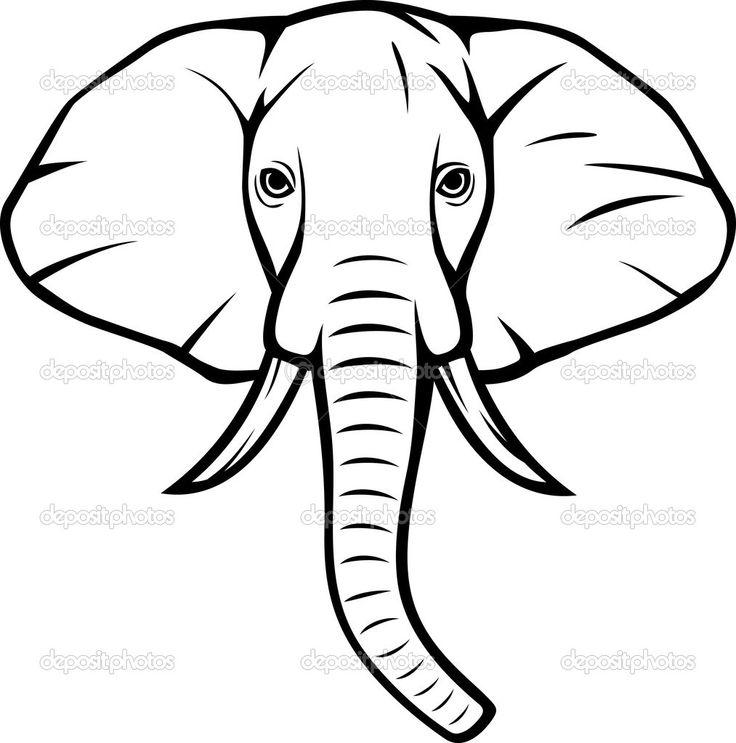 736x743 Drawn Head Indian Elephant
