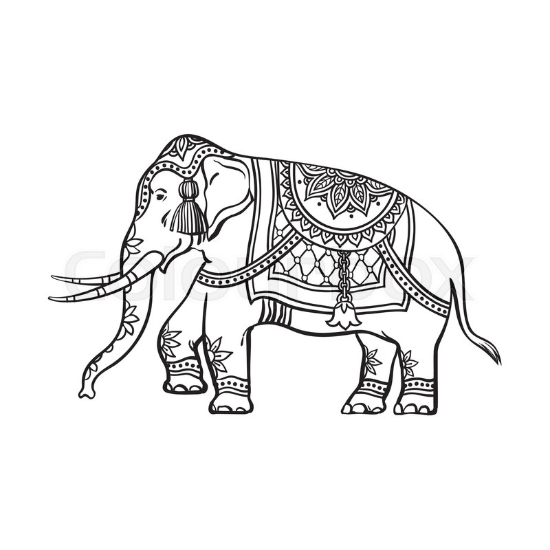 800x800 Vector Sketch Cartoon Indian Decorated Oriental Elephant. Isolated