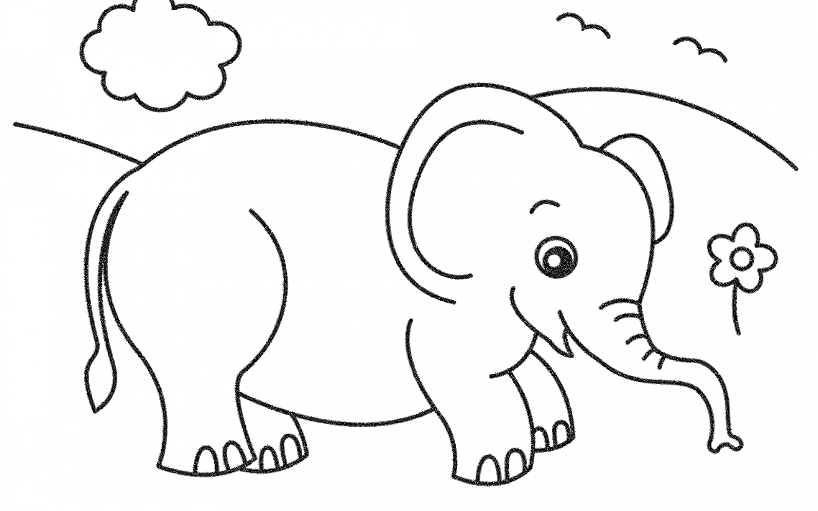 Elephant Outline Drawing at GetDrawings com | Free for personal use