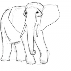 300x300 Adult Elephant Outline Image Elephant Outline Photo. Elephant