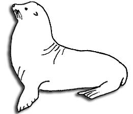 261x225 Marine Mammals Piedras Blancas San Simeon, Cambria California