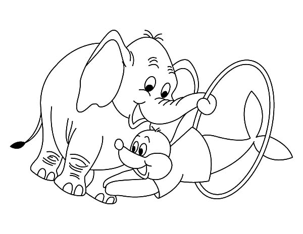 600x464 Circus Elephant Helping Seal Show Coloring Pages Best Place To Color