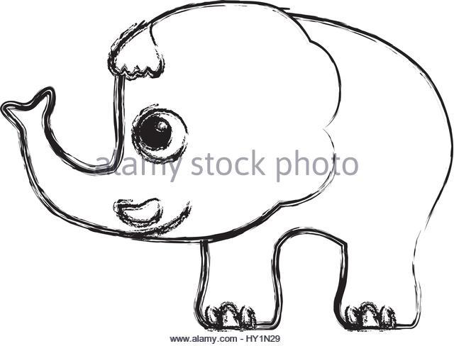 640x488 Drawing Of An Elephant Stock Photos Amp Drawing Of An Elephant Stock