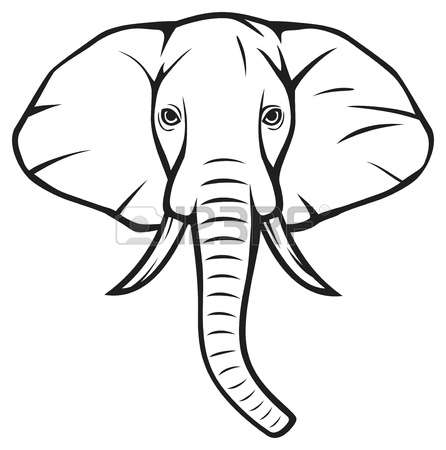 446x450 Elephant Clipart Front View