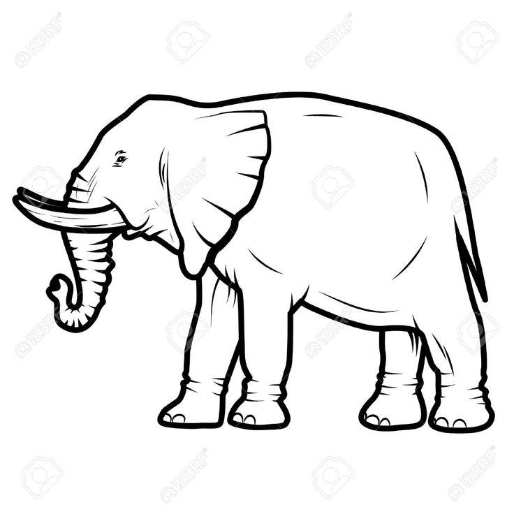 736x736 66 Best Elephant Images On Elephant Illustration