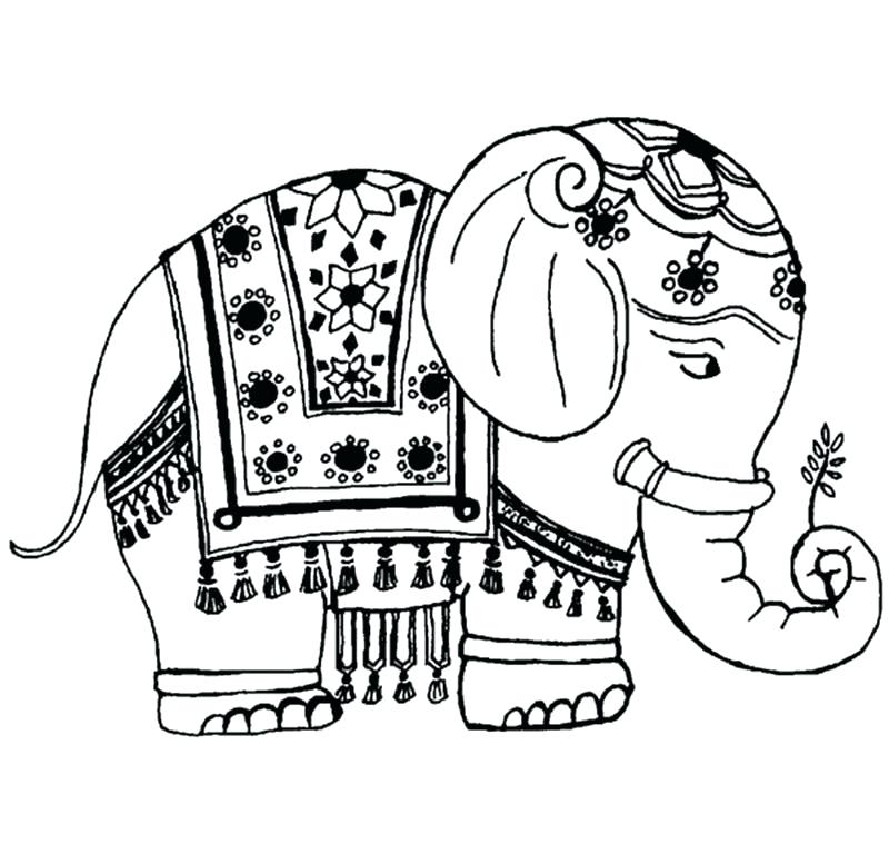 800x768 Elephant Clipart Memocards.co