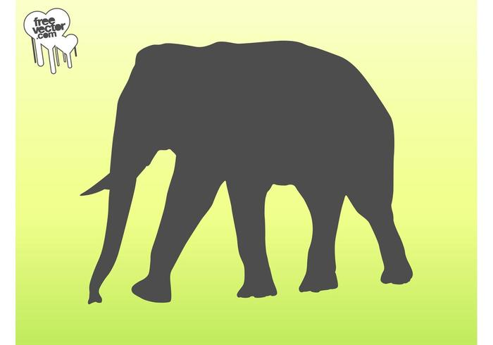 700x490 Vector Elephant Silhouette Graphics