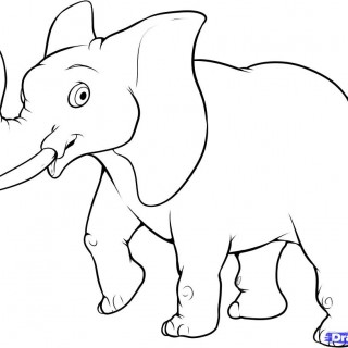320x320 Simple Animal Drawing Draw An Easy Elephant Drawings