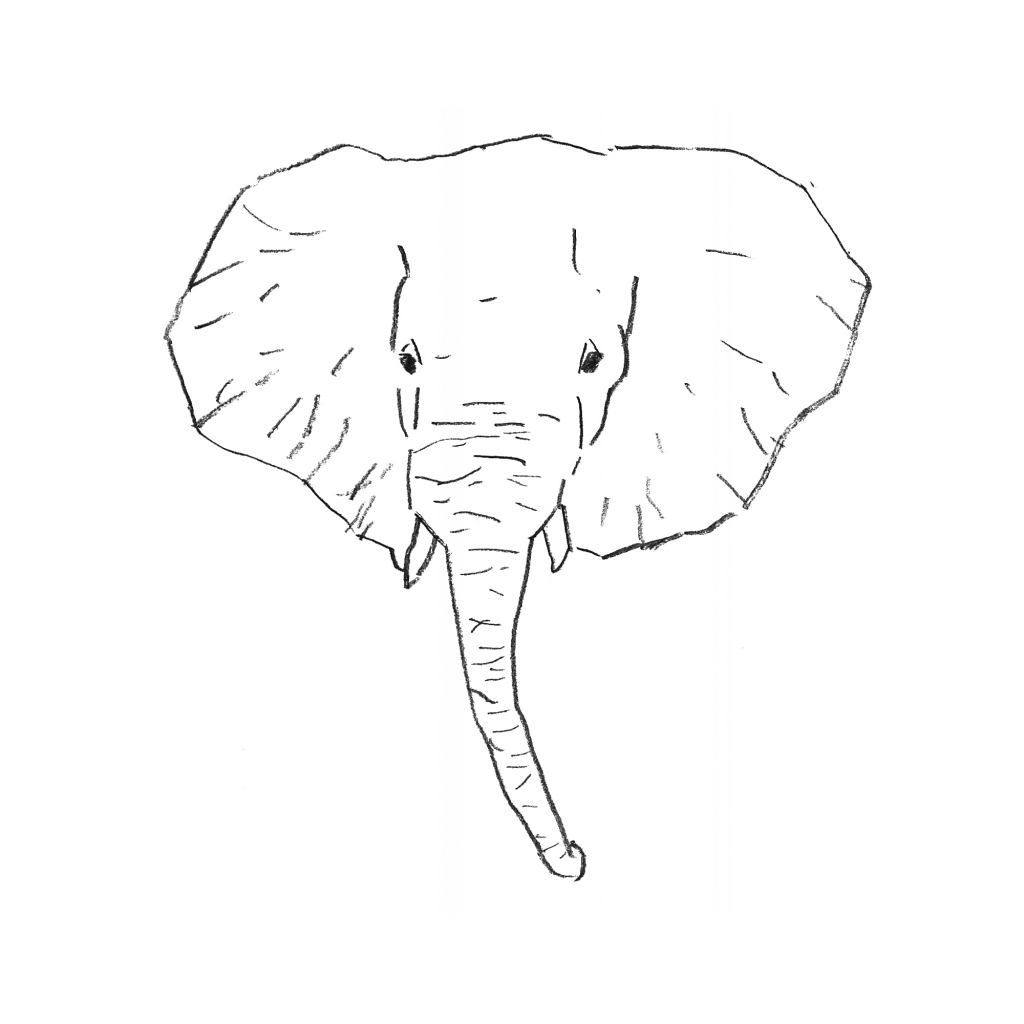 1024x1024 Simple Elephant Drawing How To Draw Simple Cartoon Elephant
