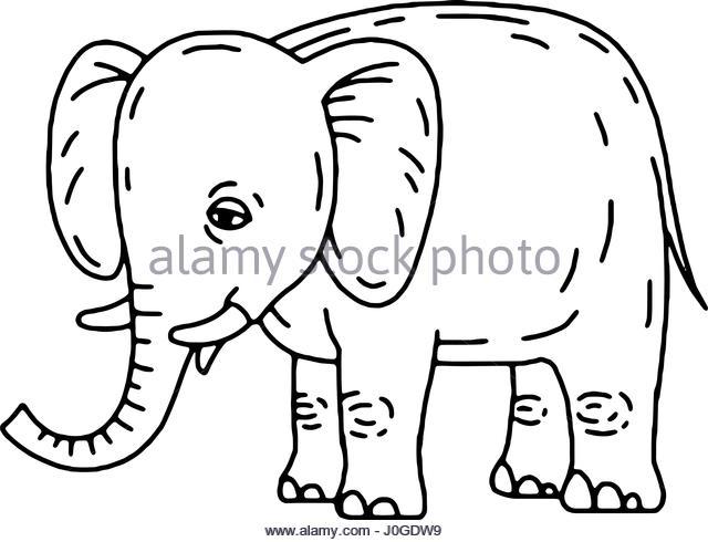 640x490 Baby Elephant Sitting Stock Photos Amp Baby Elephant Sitting Stock