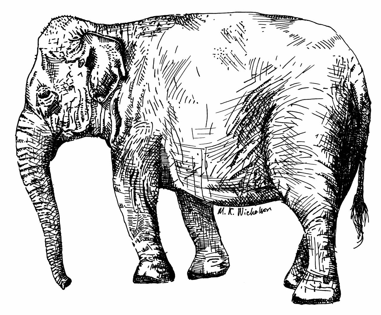Elephant Sitting Drawing at GetDrawings.com | Free for personal use ...