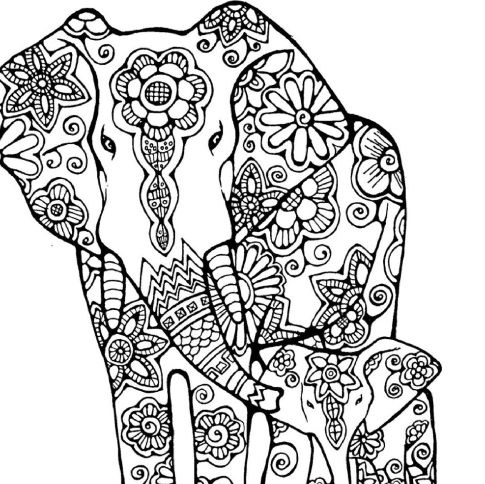 987x986 Elephant Coloring Page To Print And Color Nature Flowers