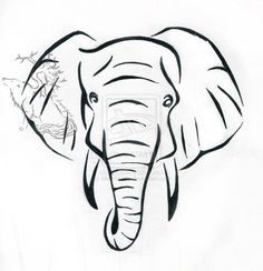 236x244 Pix For Gt Indian Elephant Head Drawings Clean Lines