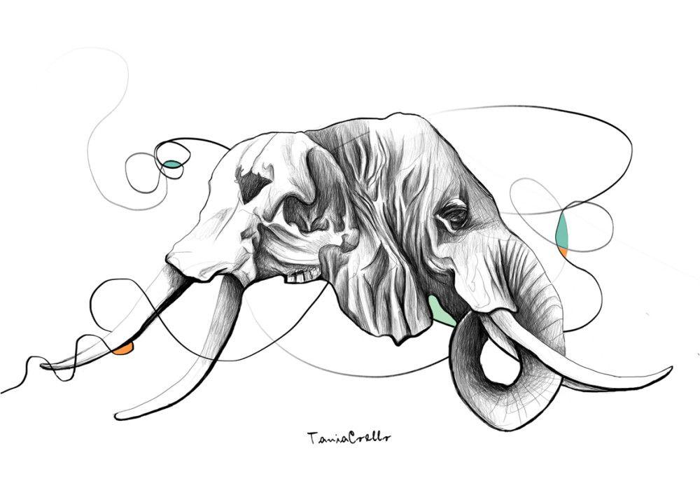 1000x707 The Elephant Skull Artistas Talenthouse Digital
