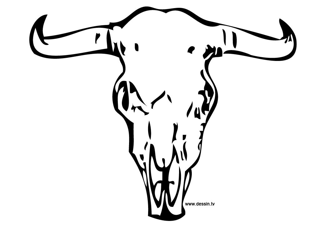 1024x768 Coloring Buffalo Skull