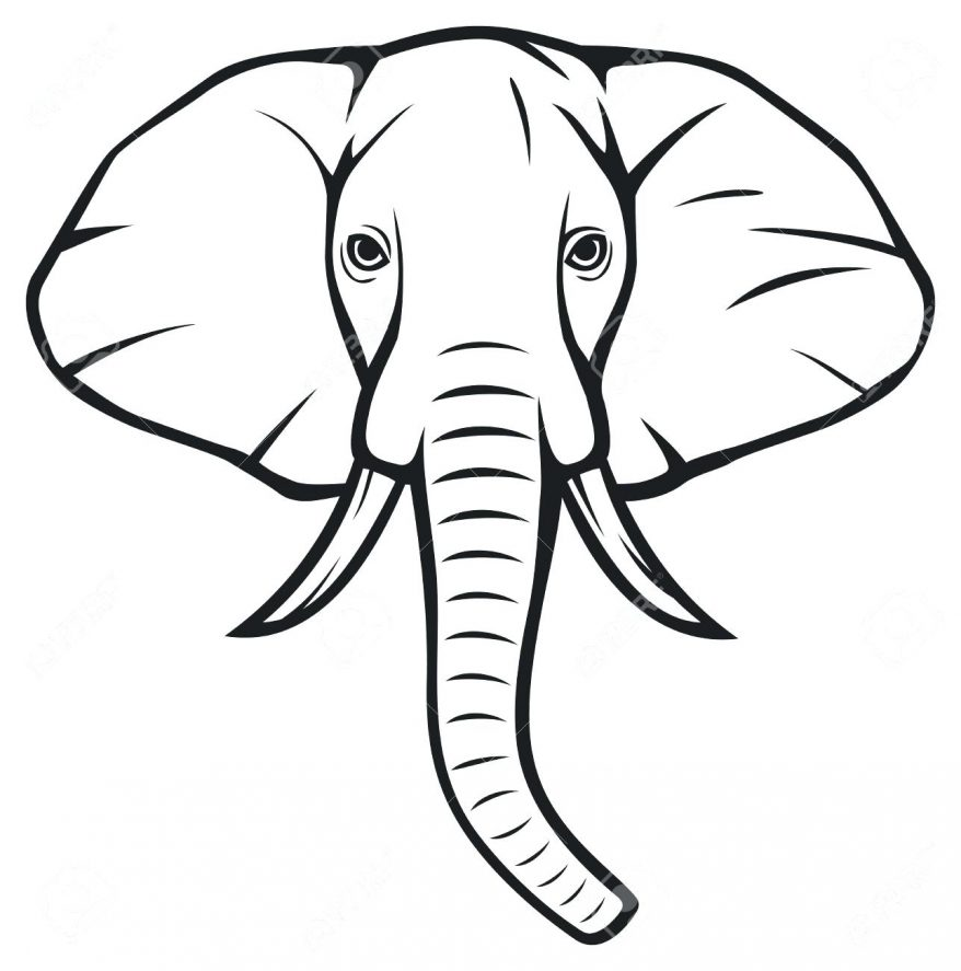 elephant trunk up drawing at getdrawings com free for personal use rh getdrawings com elephant trunk clipart elephant trunk clipart