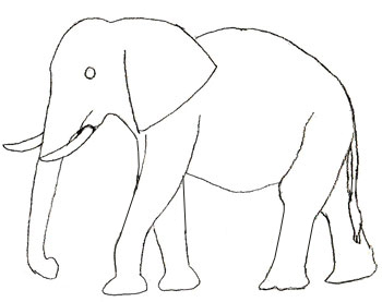Elephants Step By Step Drawing at GetDrawings | Free download
