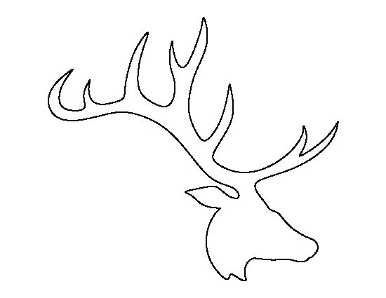 Elk Antler Drawing at GetDrawings.com | Free for personal use Elk ...
