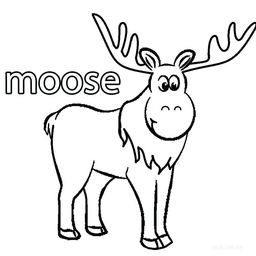 850x850 Elk Coloring Page Cartoon Moose Coloring Pages Elk Hunting