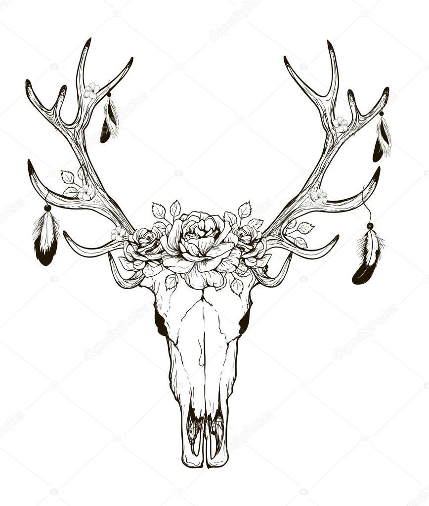 868x1024 Deer Skull Vector — Stock Vector © Lviktoria25