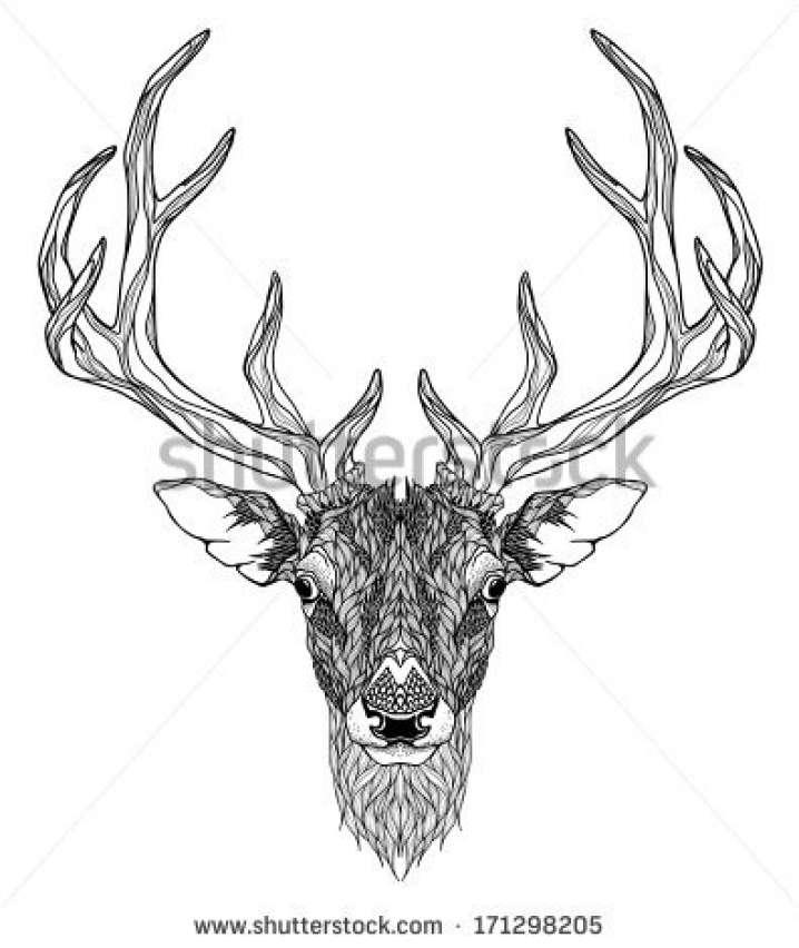 718x852 Popular Elk Antler Chandelier Psychedelic Stock Photos Images Amp