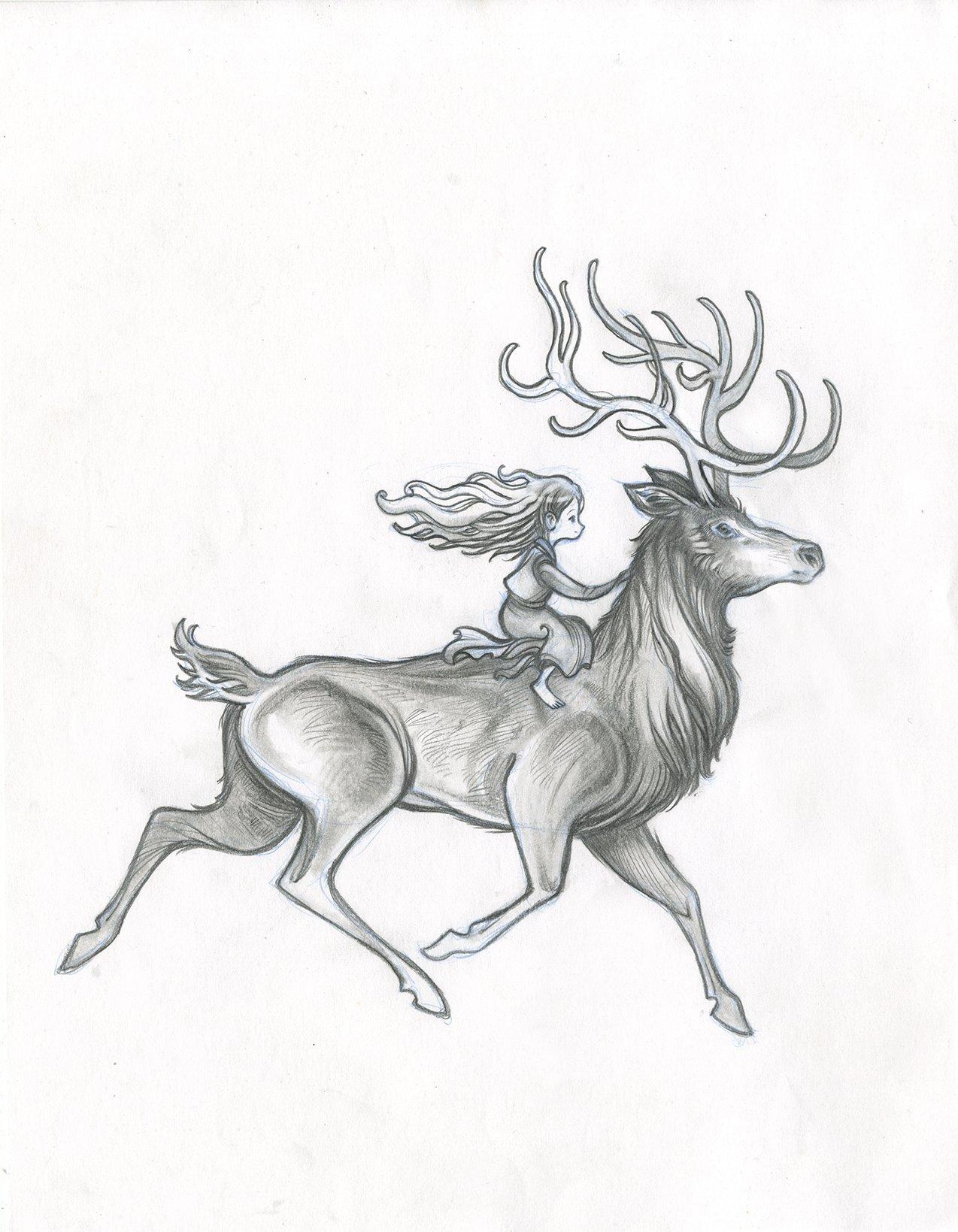 Elk Drawing at GetDrawings.com | Free for personal use Elk Drawing ...