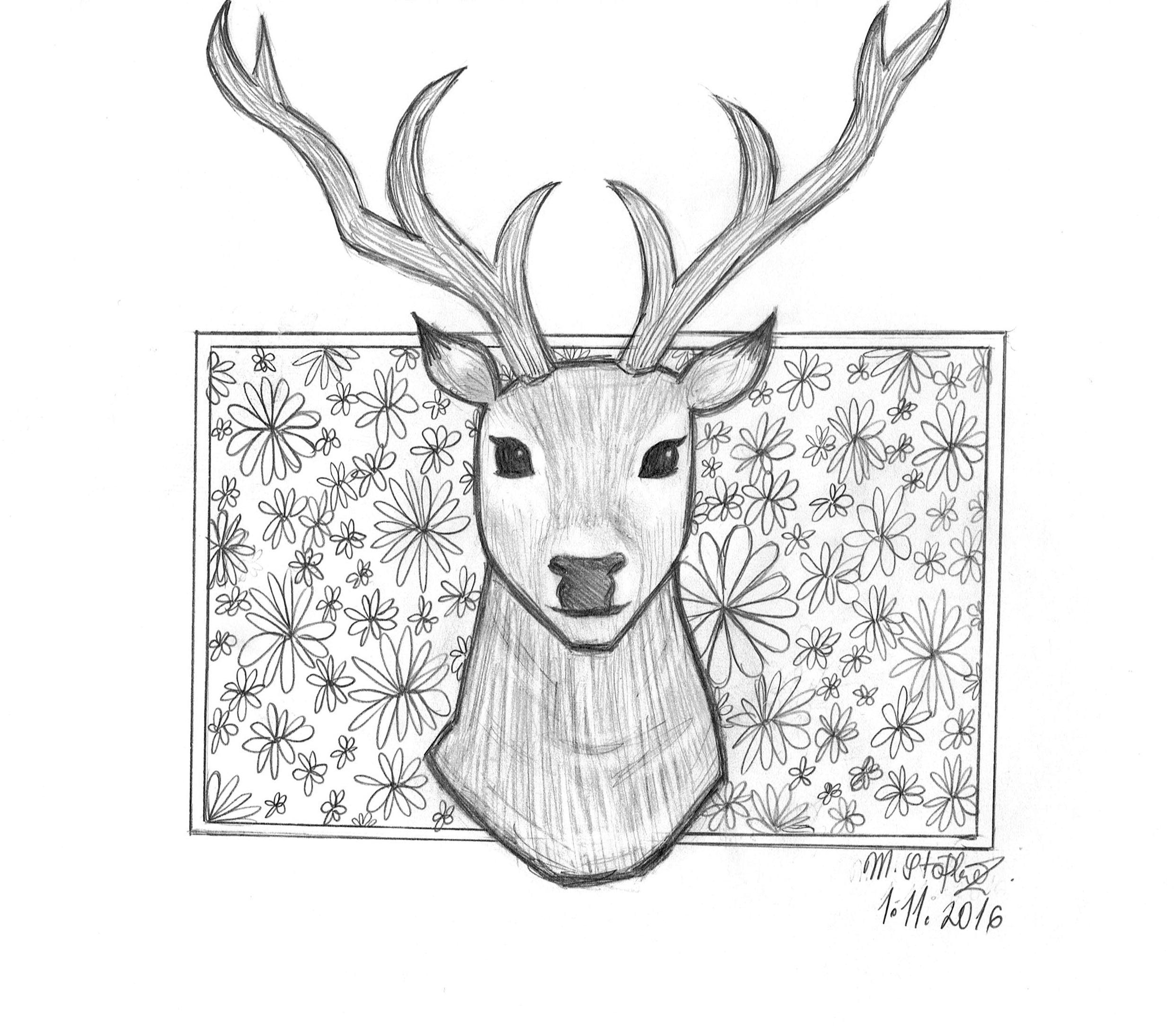 Elk Pencil Drawing at GetDrawings.com | Free for personal use Elk ...