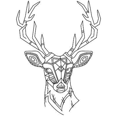 Elk Skull Drawing