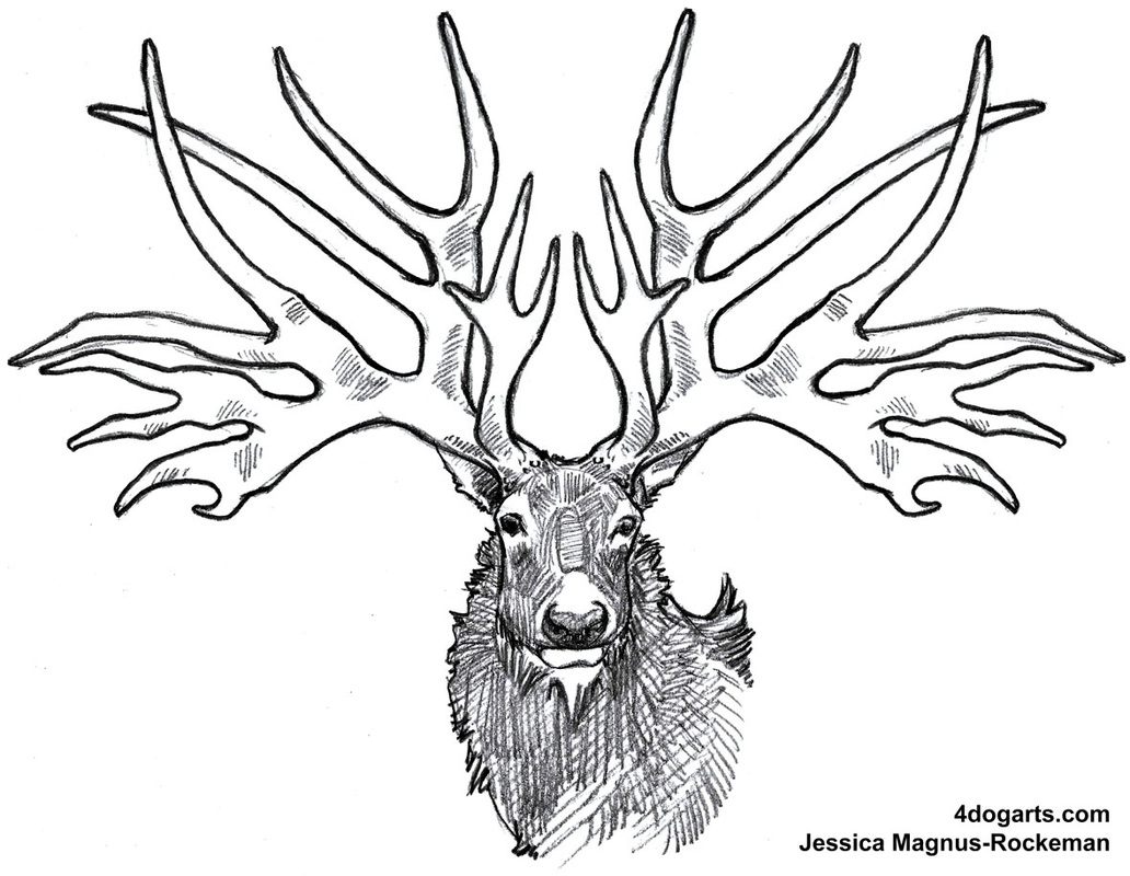 1032x800 How To Draw Eucladoceros Dicranios, Or, Icege Deer If You'Re