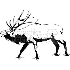 300x300 Royalty Free Black And White Elk Roaring Side Profile 394988