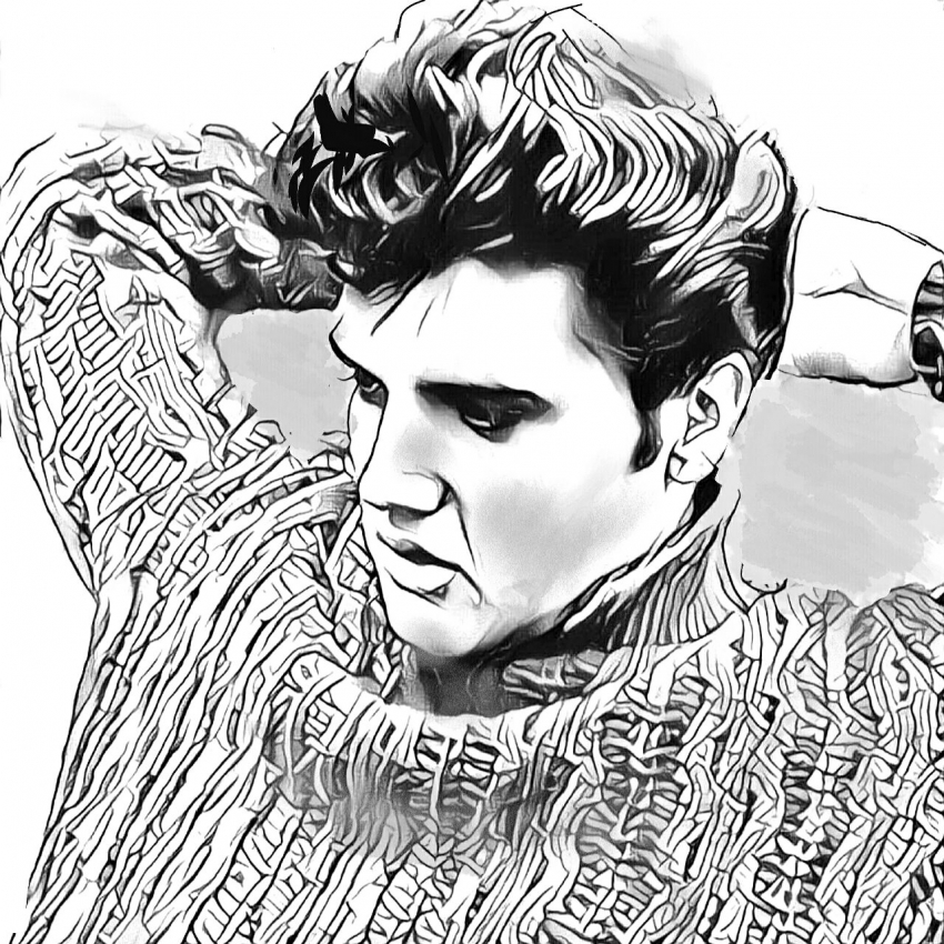 850x850 Portrait Of Elvis Presley By Shahin On Stars Portraits