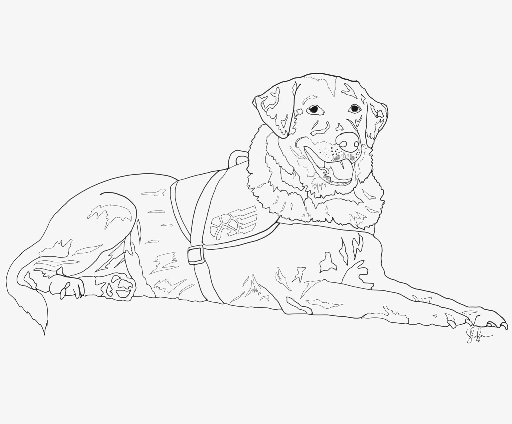 1792x1484 Custom Service Dog Drawing. Email