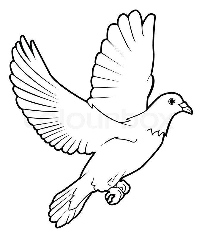 680x800 Dove Peace Stock Vector Colourbox