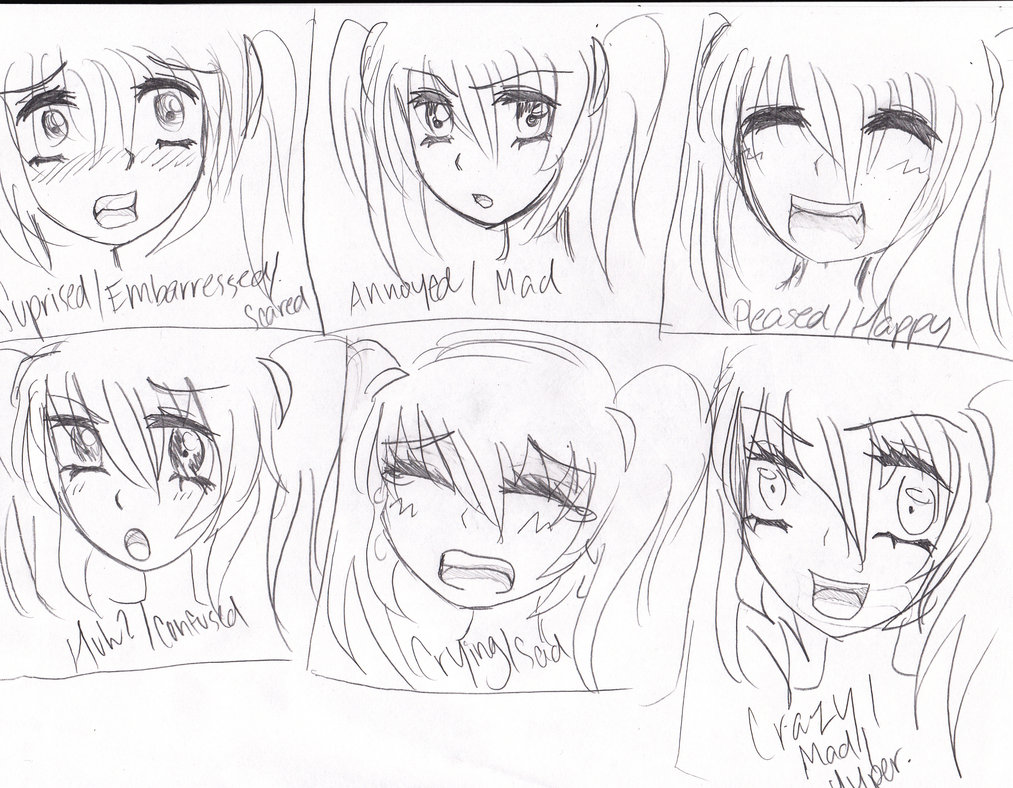 1013x788 Emotions For Drawing Anime By Transformicegurl