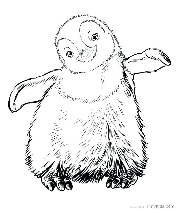 700x830 Emperor Penguin Coloring Page Birds Penguins Emperor Penguin
