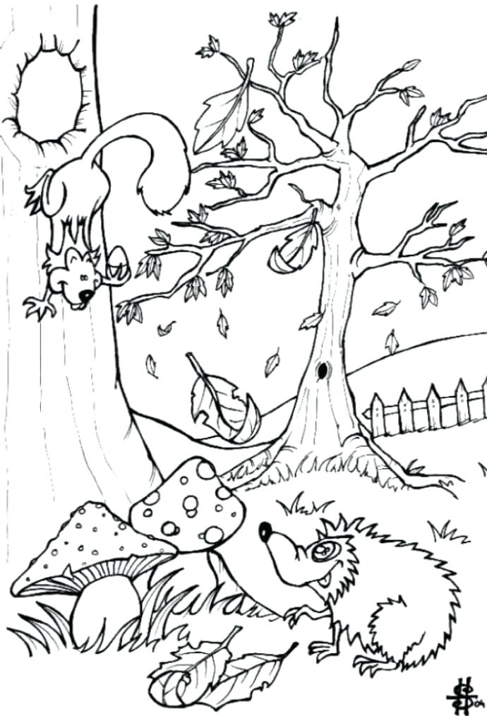 690x1014 Endangered Species Coloring Pages Endangered Animals Math Coloring