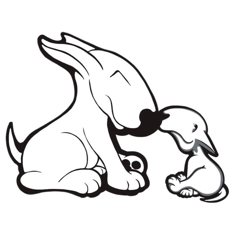 800x800 Bullies Bull Terrier