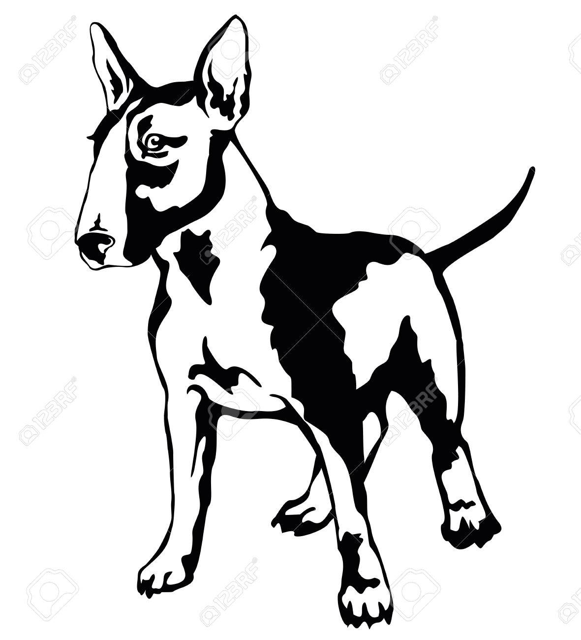 1181x1300 Decorative Portrait Of Standing In Profile Dog Bull Terrier