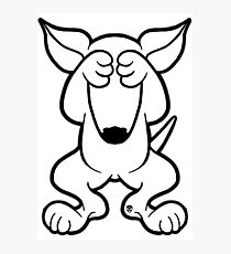 210x230 English Bull Terrier Drawing Photographic Prints Redbubble