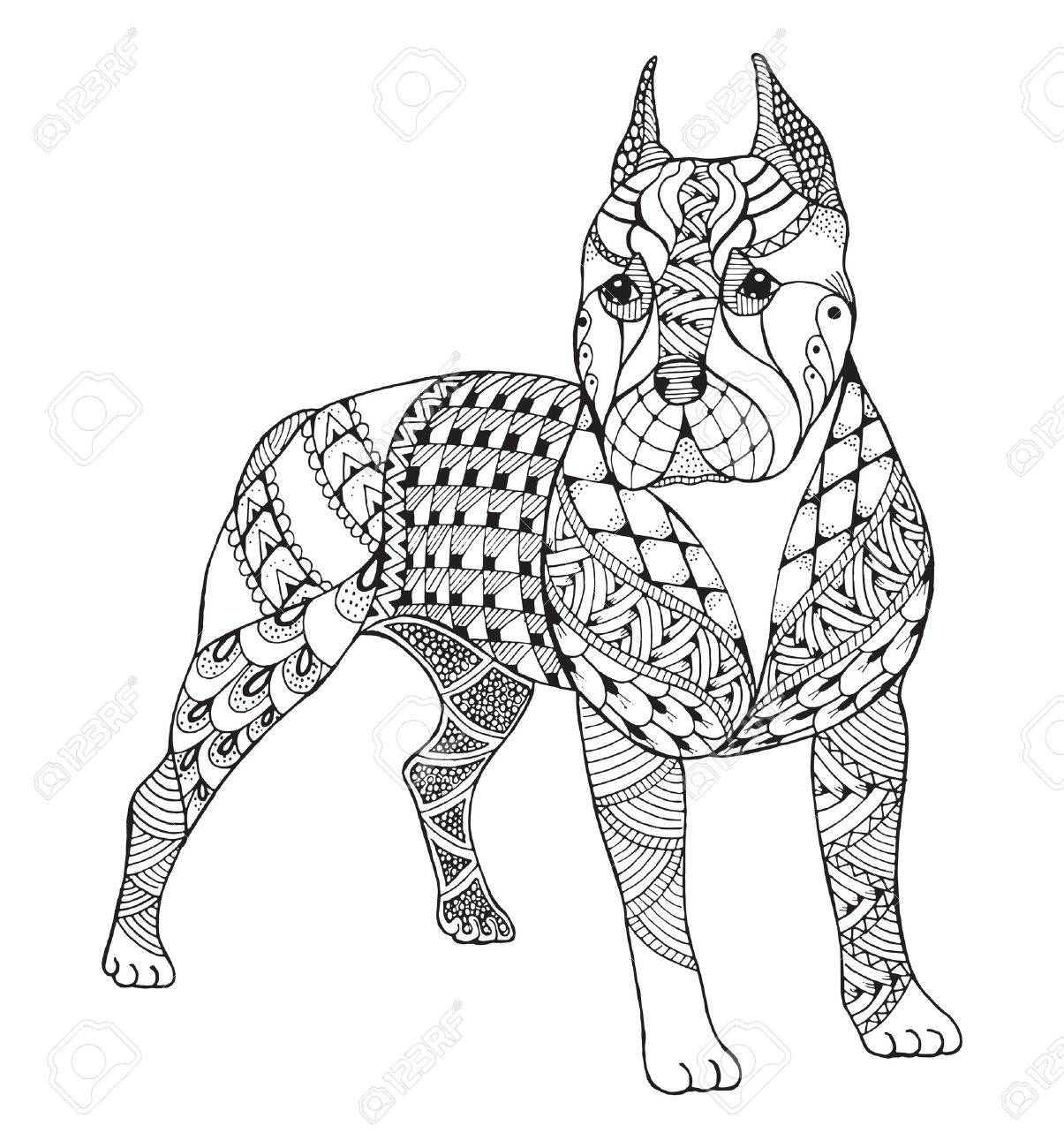 1205x1300 Pit Bull Terrier Zentangle Stylized, Vector, Illustration