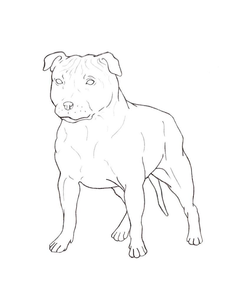 839x953 Staffordshire Bull Terrier Free Lineart By Skylarkien