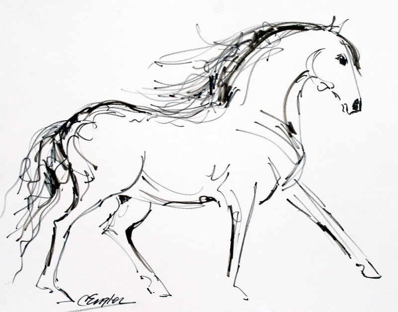 800x628 A Proud Stallion Two, Equine Ink Drawing By Carol Engles Original