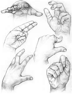 231x300 42 Best Draw Port Hands Feet Images On Drawing Hands