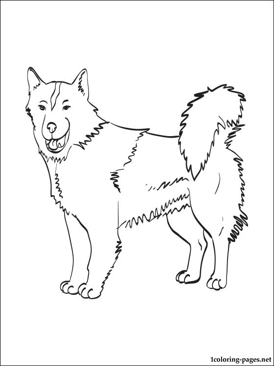 560x750 Canadian Eskimo Dog Coloring Page Coloring Pages