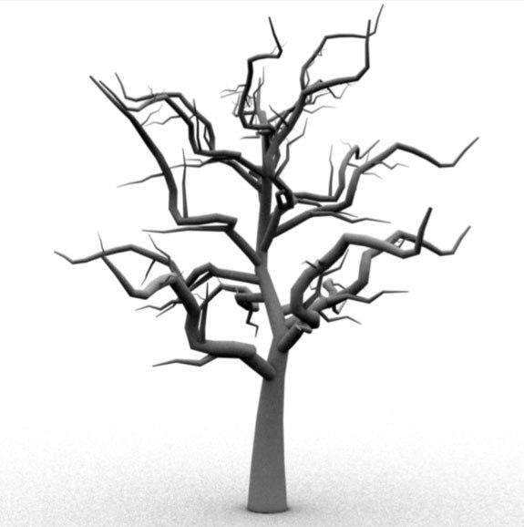 Eucalyptus Tree Drawing